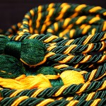 Sigma Nu Tau Honor Cords Available