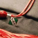 Sigma Nu Tau Lapel Pin